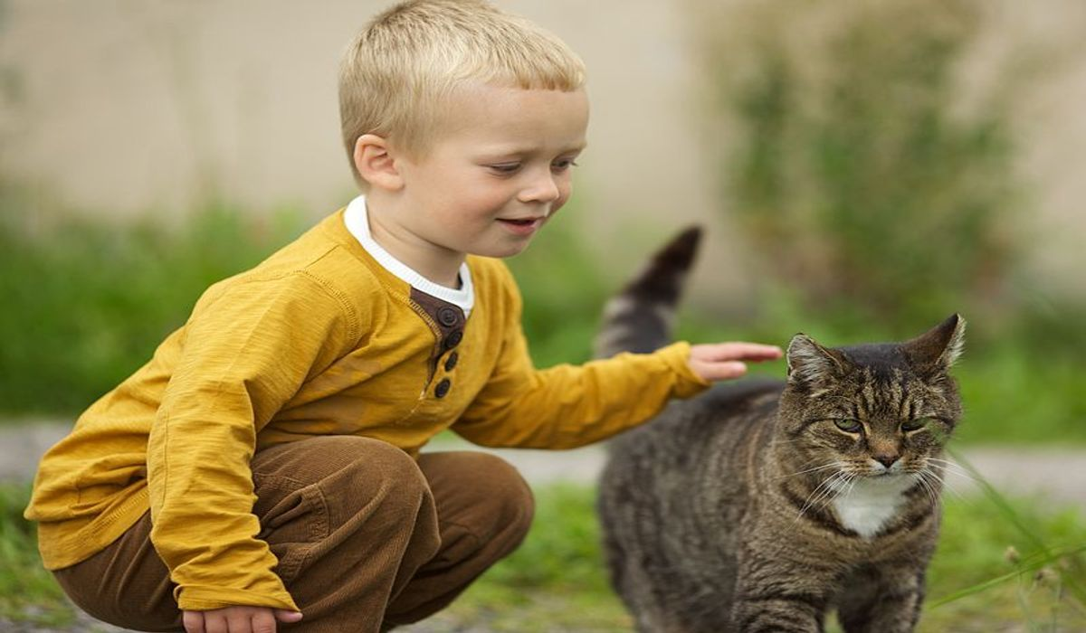 -Boy_with_a_cat (1)